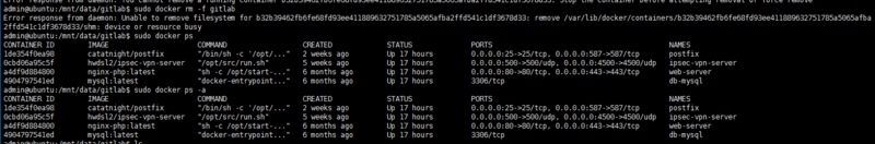 Docker deleted the container and the network is still there. How do I delete the network?